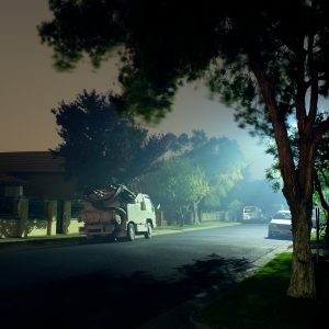 Limited Edition Prints: Suburban Haunts V