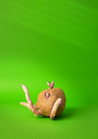 A clay model of a sprouting potato on a bright green background.