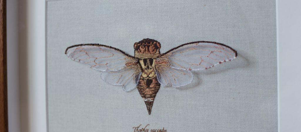 Knibbs_JB_Embroidered-Cicada_2019